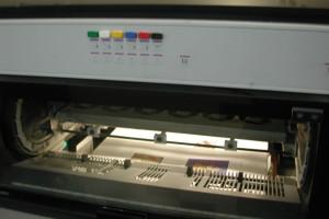 DSCN3053